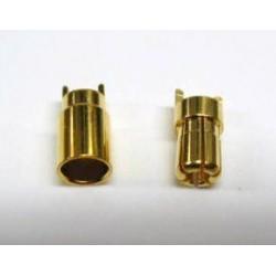 Wtyki GOLD - 5,5mm - 1 para