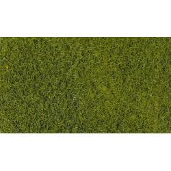 Heki 3364 Trawa jasnozielona 50 g